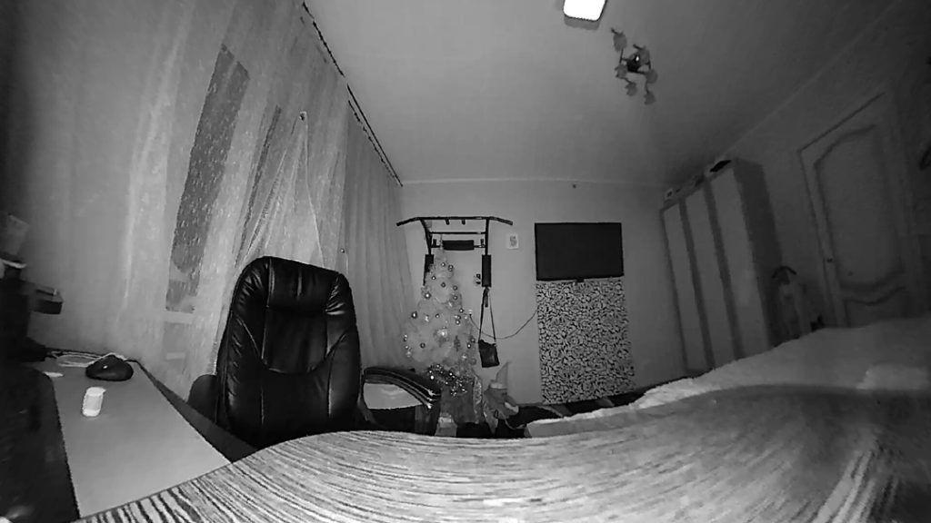Скриншот Aqara камеры с ИК подсветкой